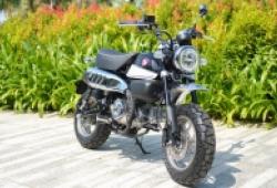 Chi tiết Honda Monkey, phiên bản 'xe khỉ' của Honda MSX nhưng đắt gấp rưỡi