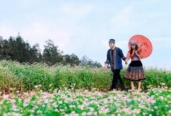 Chương trình Wagon Club đến với CAO NGUYÊN ĐÁ ĐỒNG VĂN, hoa Tam giác mạch